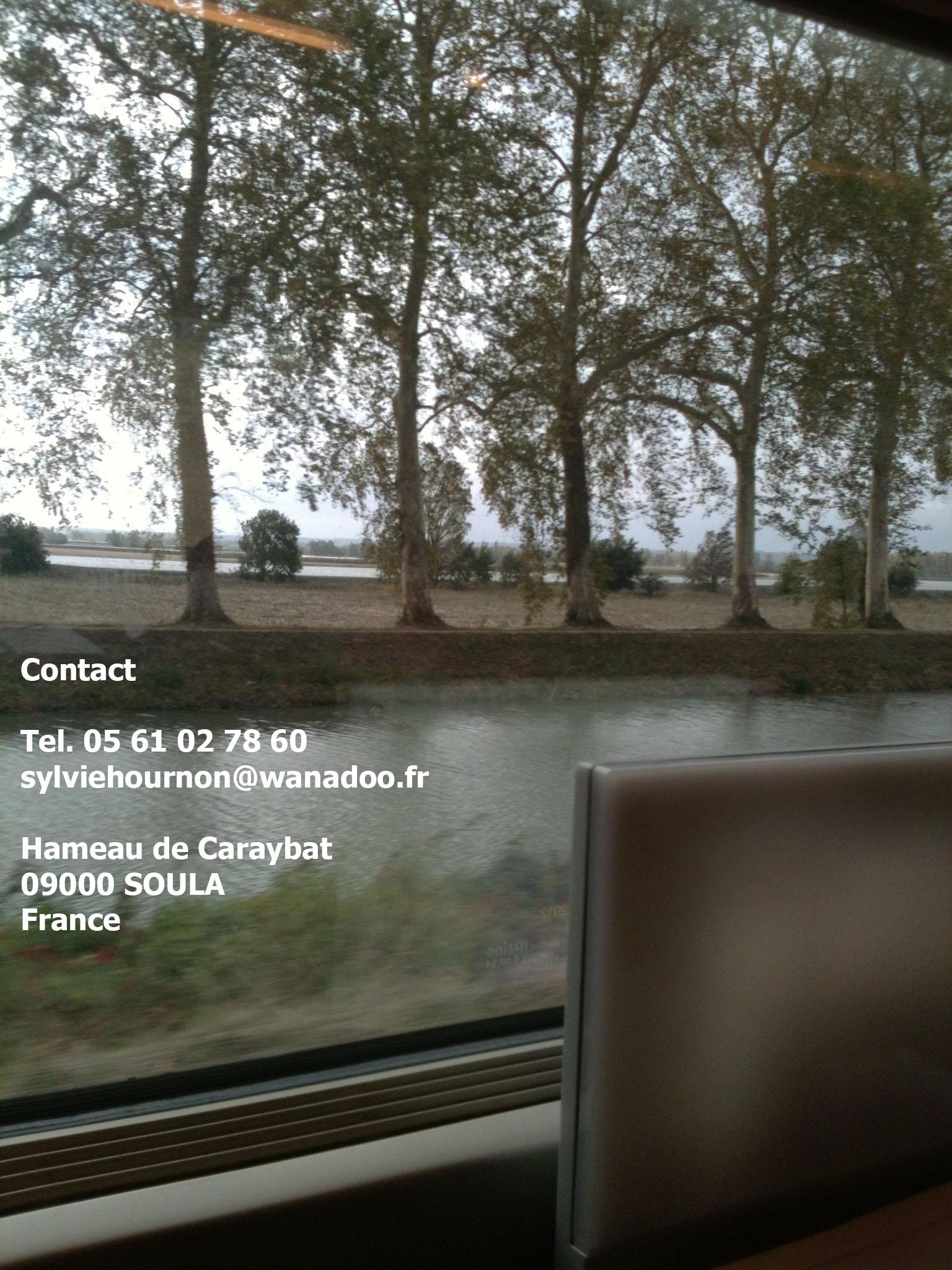 Contact-SylvieHournon