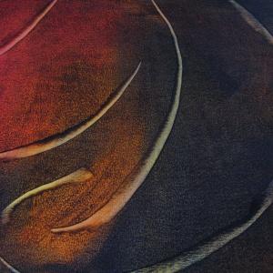 Papier contemporain a la Colle-SylvieHournon-6