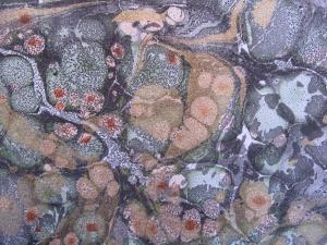 Papier marbre cailloute-SylvieHournon-6